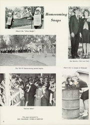 Page 10, 1967 Edition, Tremont High School - Echo Yearbook (Tremont, IL) online yearbook collection