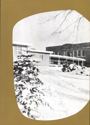 Page 15, 1960 Edition, Tonica High School - Mirror Yearbook (Tonica, IL) online yearbook collection