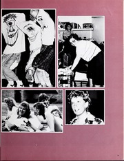 Page 17, 1987 Edition, Concordia University Chicago - Pillars Yearbook (River Forest, IL) online yearbook collection
