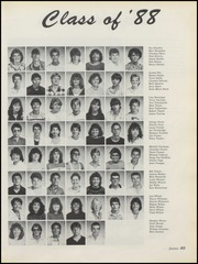 Page 89, 1987 Edition, Hobart Senior High School - Memories Yearbook (Hobart, IN) online yearbook collection