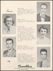 Page 17, 1954 Edition, Lamoni High School - Flame Yearbook (Lamoni, IA) online yearbook collection