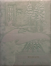 1955 Edition, Dumont High School - Wildcat Yearbook (Dumont, IA)