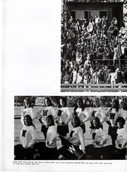 Page 43, 1967 Edition, Wellesley High School - Wellesleyan Yearbook (Wellesley, MA) online yearbook collection