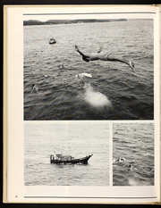 Page 74, 1987 Edition, Harold E Holt (FF 1074) - Naval Cruise Book online yearbook collection