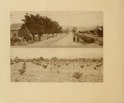 Page 16, 1910 Edition, New Mexico State University - Swastika Yearbook (Las Cruces, NM) online yearbook collection