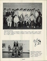 Woodhaven High School - Arrow Yearbook (Brownstown, MI) online yearbook collection, 1973 Edition, Page 28