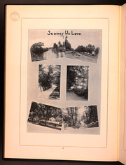 Page 14, 1920 Edition, Hope College - Milestone Yearbook (Holland, MI) online yearbook collection