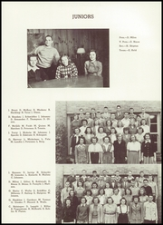Page 43, 1945 Edition, St Louis Park High School - Echowan Yearbook (St Louis Park, MN) online yearbook collection