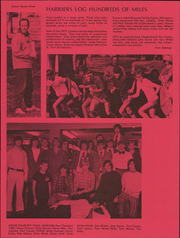 Page 13, 1974 Edition, Lourdes High School - Raconteur Yearbook (Rochester, MN) online yearbook collection