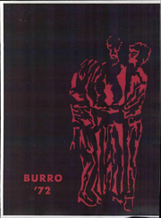 1972 Edition, Lanesboro High School - Burro Yearbook (Lanesboro, MN)