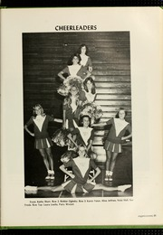 Page 85, 1977 Edition, Florida Southern College - Interlachen Yearbook (Lakeland, FL) online yearbook collection