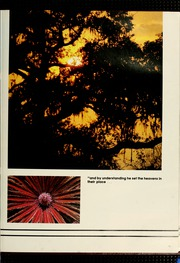 Page 17, 1980 Edition, Florida Southern College - Interlachen Yearbook (Lakeland, FL) online yearbook collection