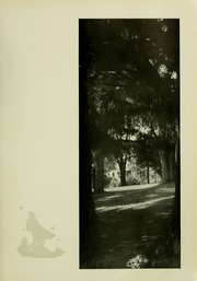 Page 13, 1929 Edition, University of Maryland College Park - Terrapin / Reveille Yearbook (College Park, MD) online yearbook collection