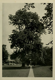 Page 15, 1928 Edition, Haverford College - Record Yearbook (Haverford, PA) online yearbook collection