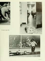 Page 17, 1978 Edition, Davidson College - Quips and Cranks Yearbook (Davidson, NC) online yearbook collection