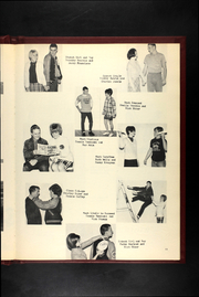 Page 17, 1968 Edition, Wheaton High School - Bulldog Yearbook (Wheaton, MO) online yearbook collection