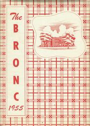 1955 Edition, Stapleton High School - Bronco Yearbook (Stapleton, NE)