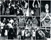 Page 202, 1974 Edition, Montana State University Bozeman - Montanan Yearbook (Bozeman, MT) online yearbook collection