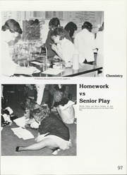 Page 101, 1987 Edition, Lenape High School - Legend Yearbook (Medford, NJ) online yearbook collection