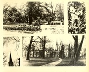 Page 9, 1932 Edition, McKendree University - McKendrean Yearbook (Lebanon, IL) online yearbook collection