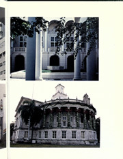 Page 11, 1981 Edition, University of Miami - Ibis Yearbook (Coral Gables, FL) online yearbook collection