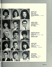 Page 251, 1989 Edition, University of Miami - Ibis Yearbook (Coral Gables, FL) online yearbook collection