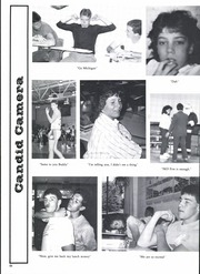 Page 92, 1987 Edition, Chippewa High School - Chippewa Yearbook (Doylestown, OH) online yearbook collection