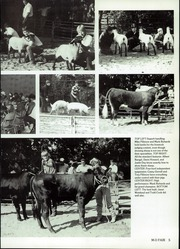 Page 7, 1986 Edition, Mulhall Orlando High School - Panther Yearbook (Orlando, OK) online yearbook collection