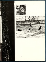 Page 7, 1968 Edition, Peace College - Lotus Yearbook (Raleigh, NC) online yearbook collection