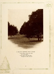 Page 13, 1922 Edition, Maryville College - Chilhowean Yearbook (Maryville, TN) online yearbook collection