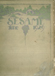 1929 Edition, South Hills High School - Lives Yearbook (Pittsburgh, PA)