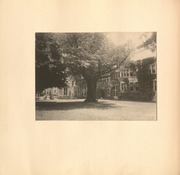 Page 16, 1908 Edition, Bryn Mawr College - Bryn Mawr Yearbook (Bryn Mawr, PA) online yearbook collection