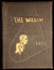 1955 Edition, Dillon High School - Wildcat Yearbook (Dillon, SC)