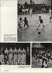 Page 44, 1973 Edition, Lexington High School - Cats Paw Yearbook (Lexington, SC) online yearbook collection