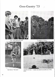 Abbot Pennings High School - Argos Yearbook (De Pere, WI) online yearbook collection, 1974 Edition, Page 82