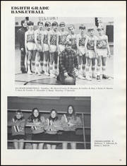 Albany High School - Comet / Winnetkan Yearbook (Albany, WI) online yearbook collection, 1975 Edition, Page 87 of 120
