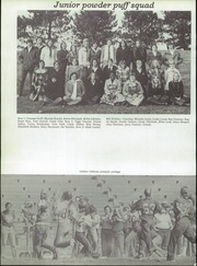 Alton High School - Tatler Yearbook (Alton, IL) online yearbook collection, 1976 Edition, Page 100