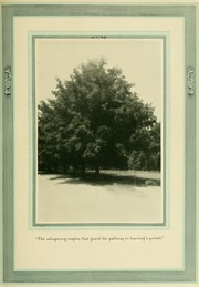 North Carolina State University - Agromeck Yearbook (Raleigh, NC) online yearbook collection, 1923 Edition, Page 15
