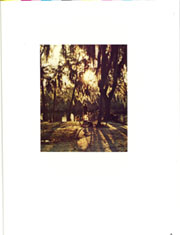 Page 7, 1972 Edition, University of Florida - Tower Seminole Yearbook (Gainesville, FL) online yearbook collection