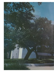 Page 12, 1982 Edition, University of Texas School of Law - Peregrinus Yearbook (Austin, TX) online yearbook collection