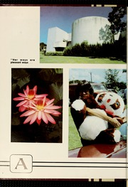 Page 12, 1980 Edition, Florida Southern College - Interlachen Yearbook (Lakeland, FL) online yearbook collection