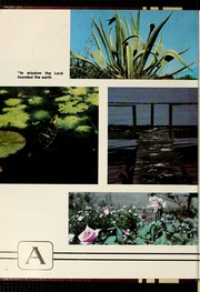 Page 16, 1980 Edition, Florida Southern College - Interlachen Yearbook (Lakeland, FL) online yearbook collection